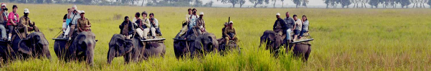 West India - tourpackages