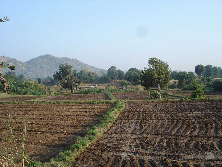 Ahmedabad Agriculture Land
