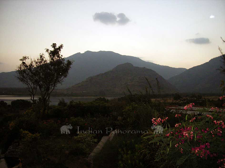 Views from the terraces at Cardamom House, Dindigul