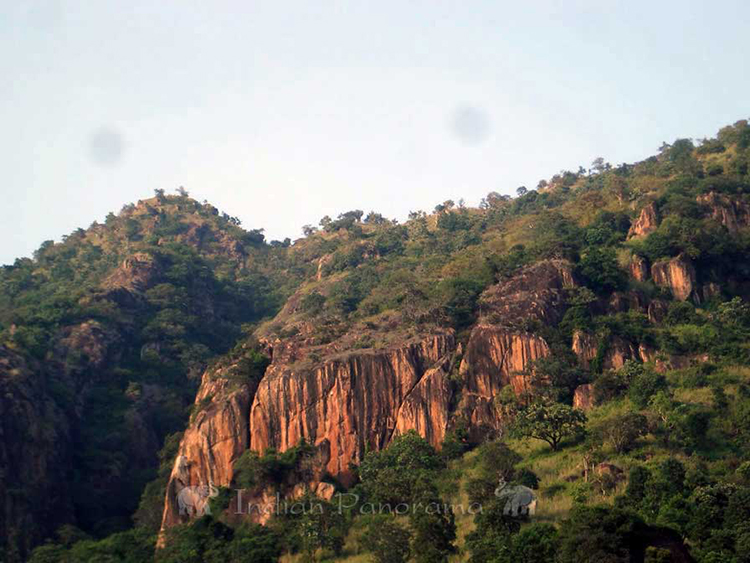 Mountain views surrounding Cardamom House, Dindigul