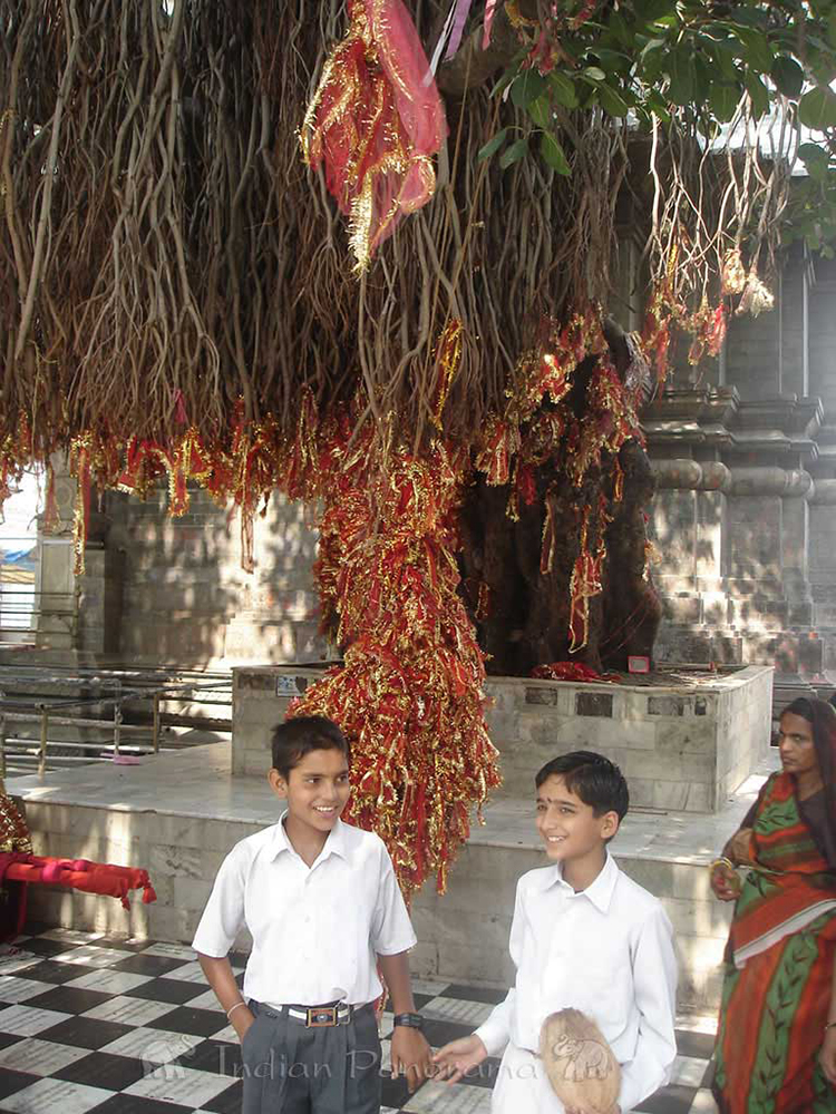 Children at Bajreshwari Temple, Kangra Valley