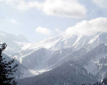 Winter Scenes In Gulmarg, Kashmir