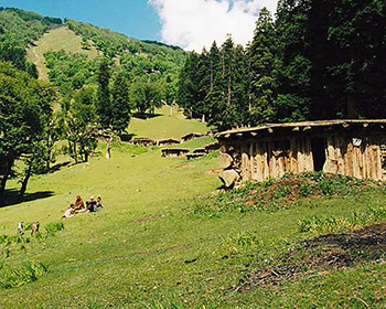 Summer Life In Kashmir Mountains