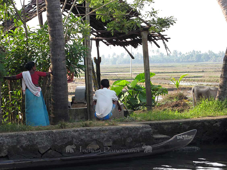 Local Farming Villagers