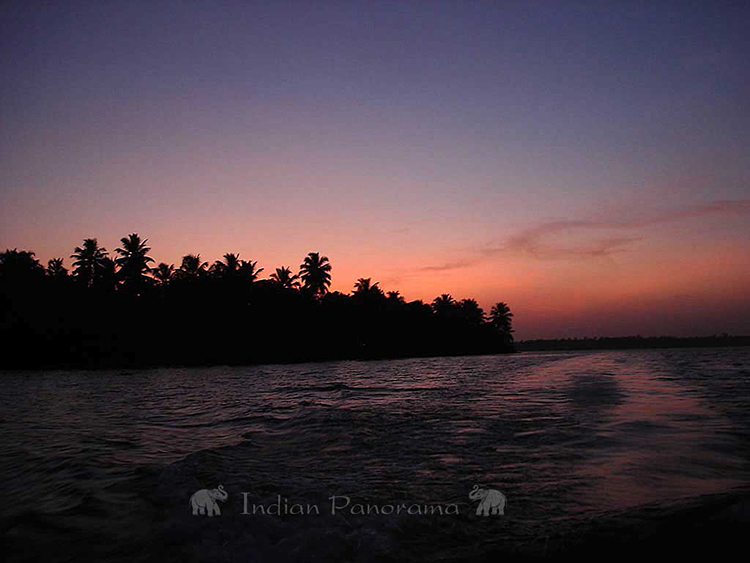 Kerala's Backwaters Scenery