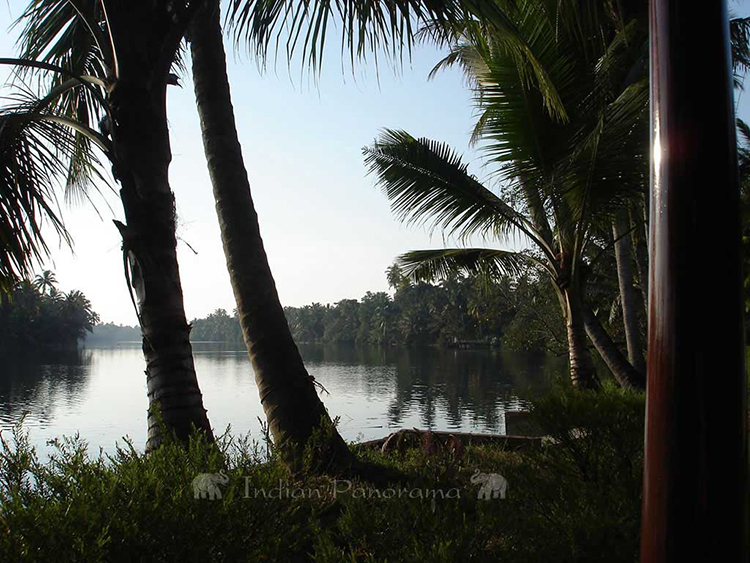 Backwaters Scenery