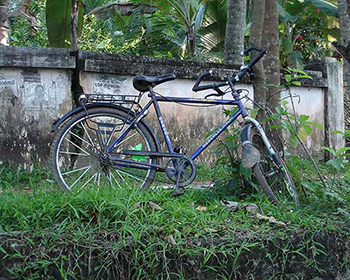 Cycles On Backwaters Road