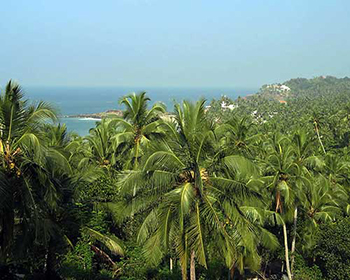 Kovalam Beach Sightview