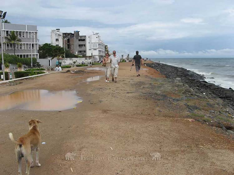 A Beach Walk In Pondicherry Beach