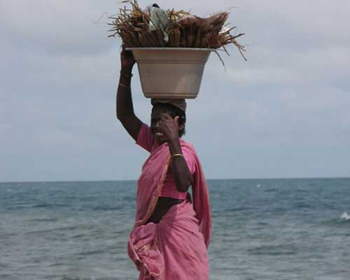 Pondicherry Local Peddler