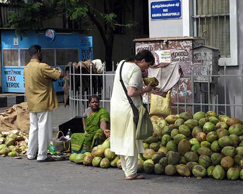 Coconut Stall, Pondicherry