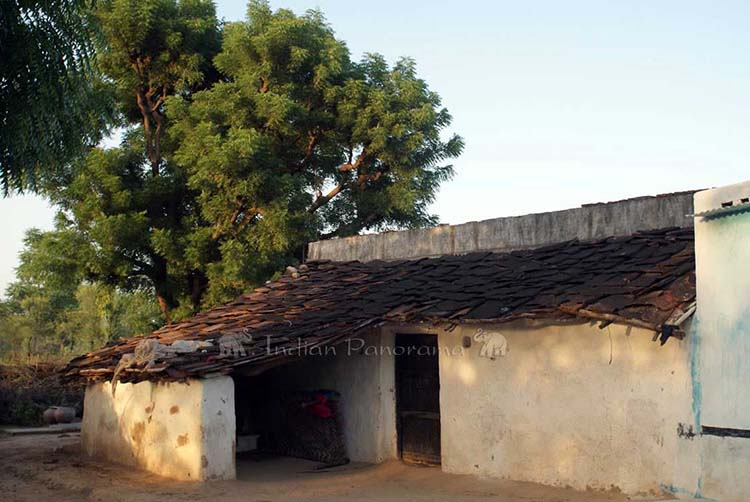 Traditional Bishnoi House