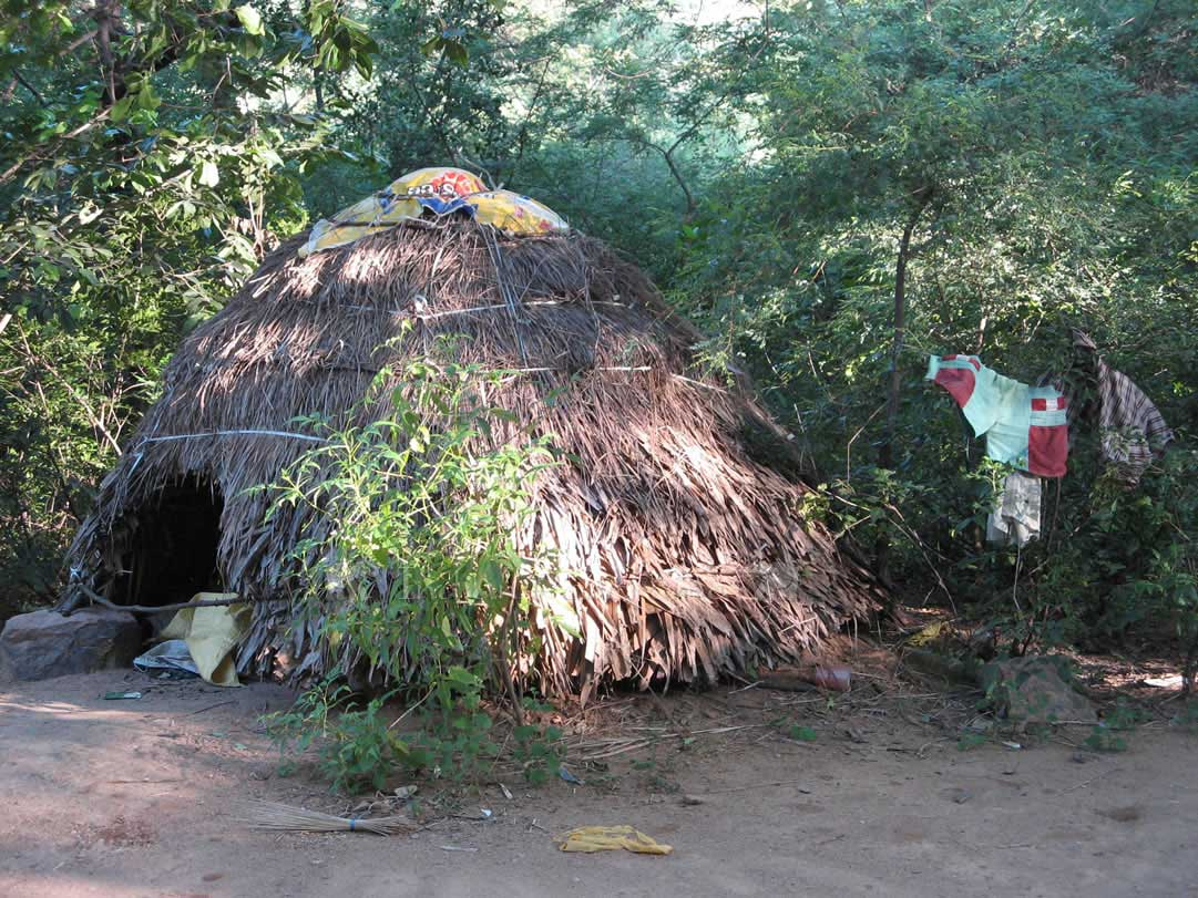 Grass Hut In Tiruvannamalai