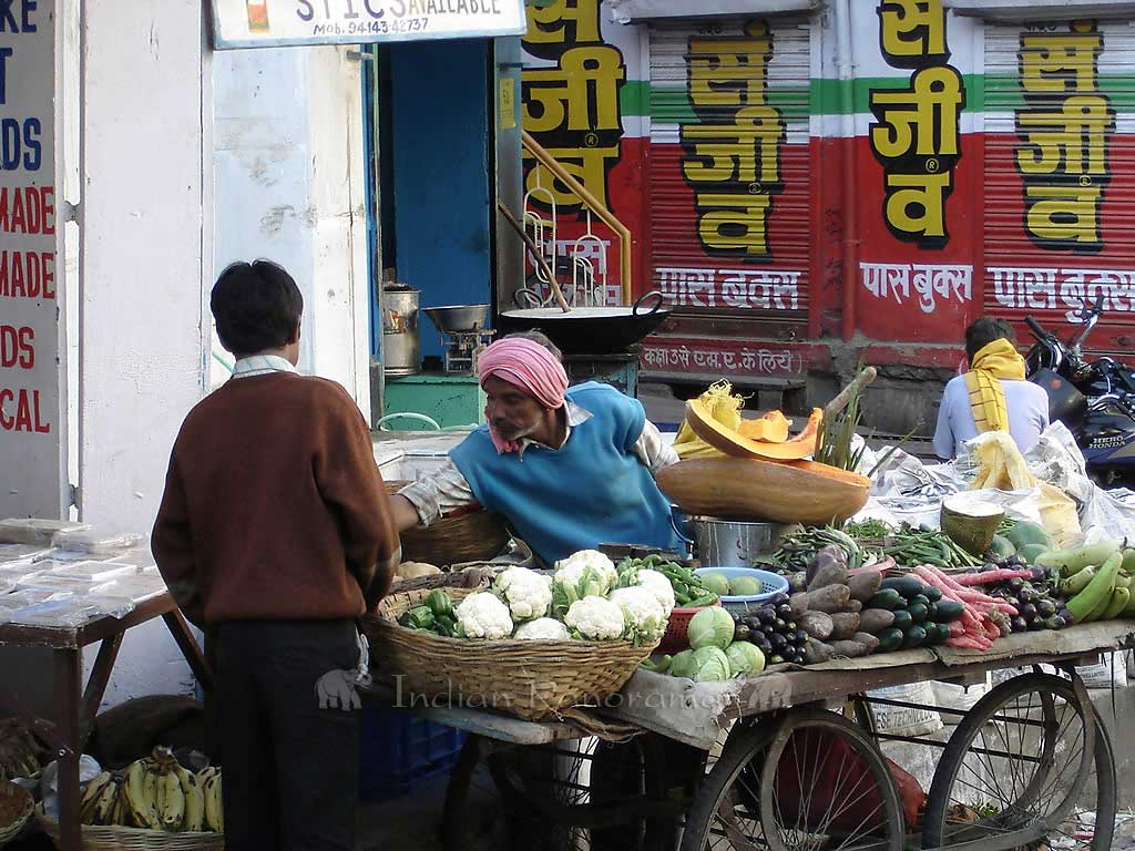 Udaipur Vegetable Hawker