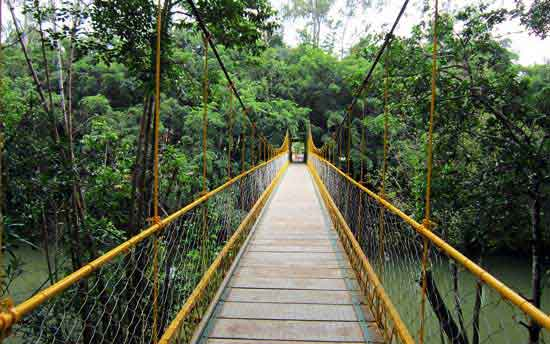 coorg-tourpackages