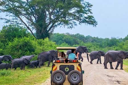 Yala-nationalpark